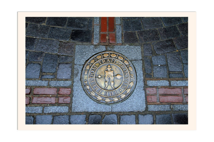 FreedomTrail_BeePedia_Image1